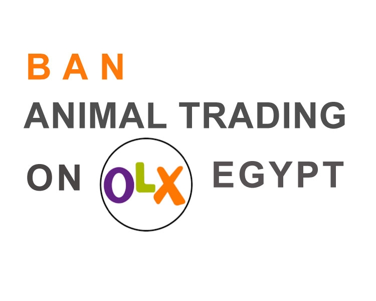 Sign petition: Stop selling animals on OLX Egypt · GoPetition com