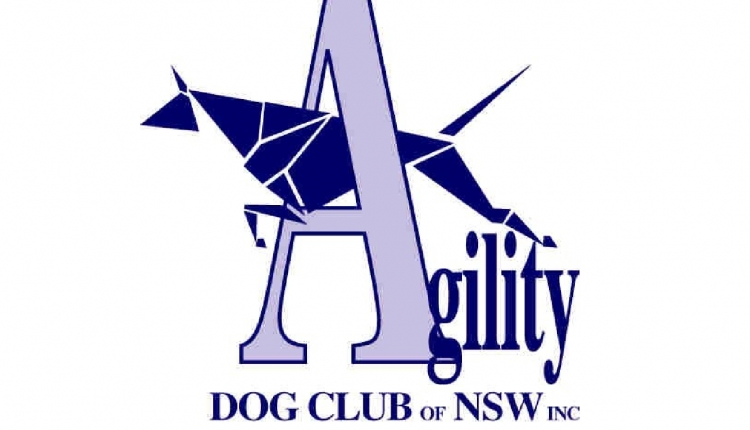 Dog Agility Training Castle Hill