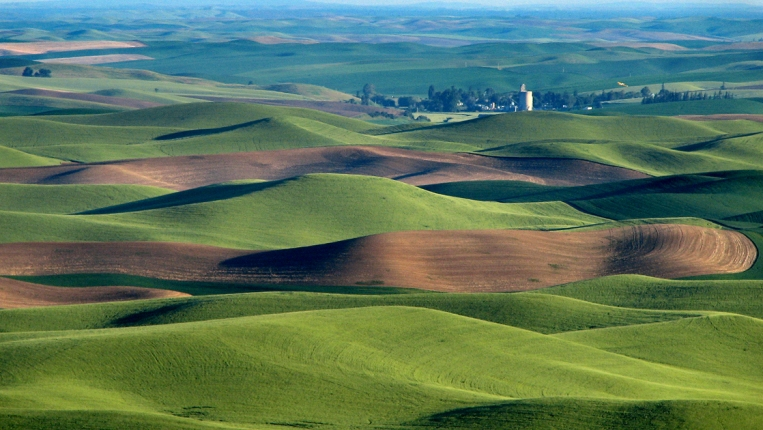sign petition stop nestle from coming to walla walla valley