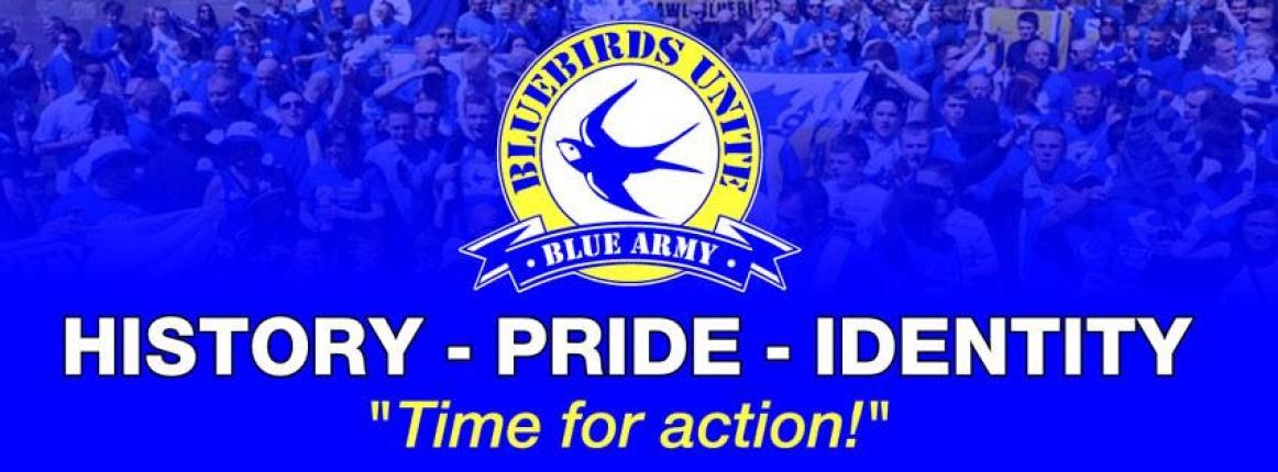 Bluebirds Unite - Conserving CCFC's Identity